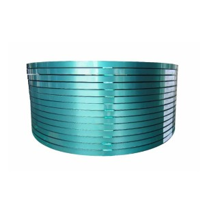 Steel-plastic Strip